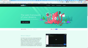 official website of Sails.js project